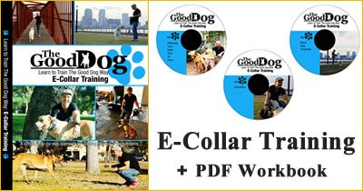 Dog Training Pdf