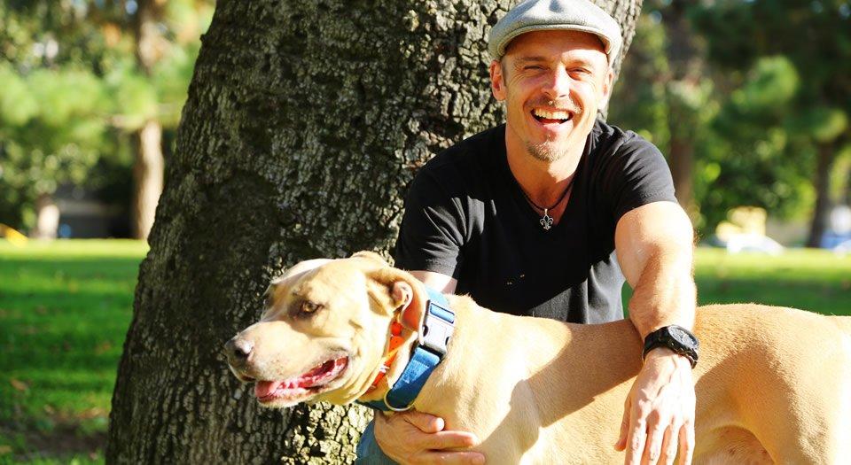 the-good-dog-testimonials