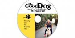 Disc 1 - The Foundation