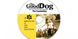 Disc 2 - The Foundation