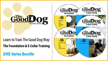 The Foundation and E-Collar Training Bundle