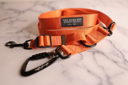 Limited Edition Hunter Orange Leash