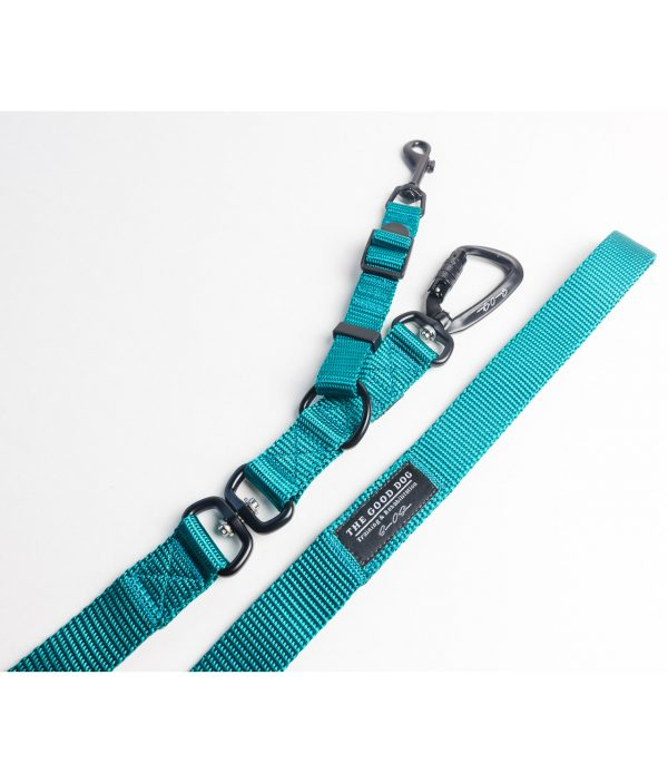 Limited Edition Leashes - Teal
