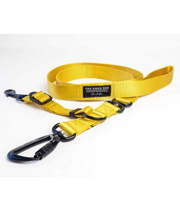 Limited Edition Leashes - Gold